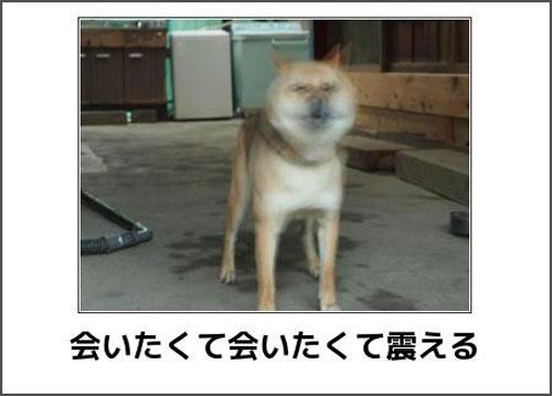 【閲覧注意】Masiiの出会い体験日記(エロあり!)